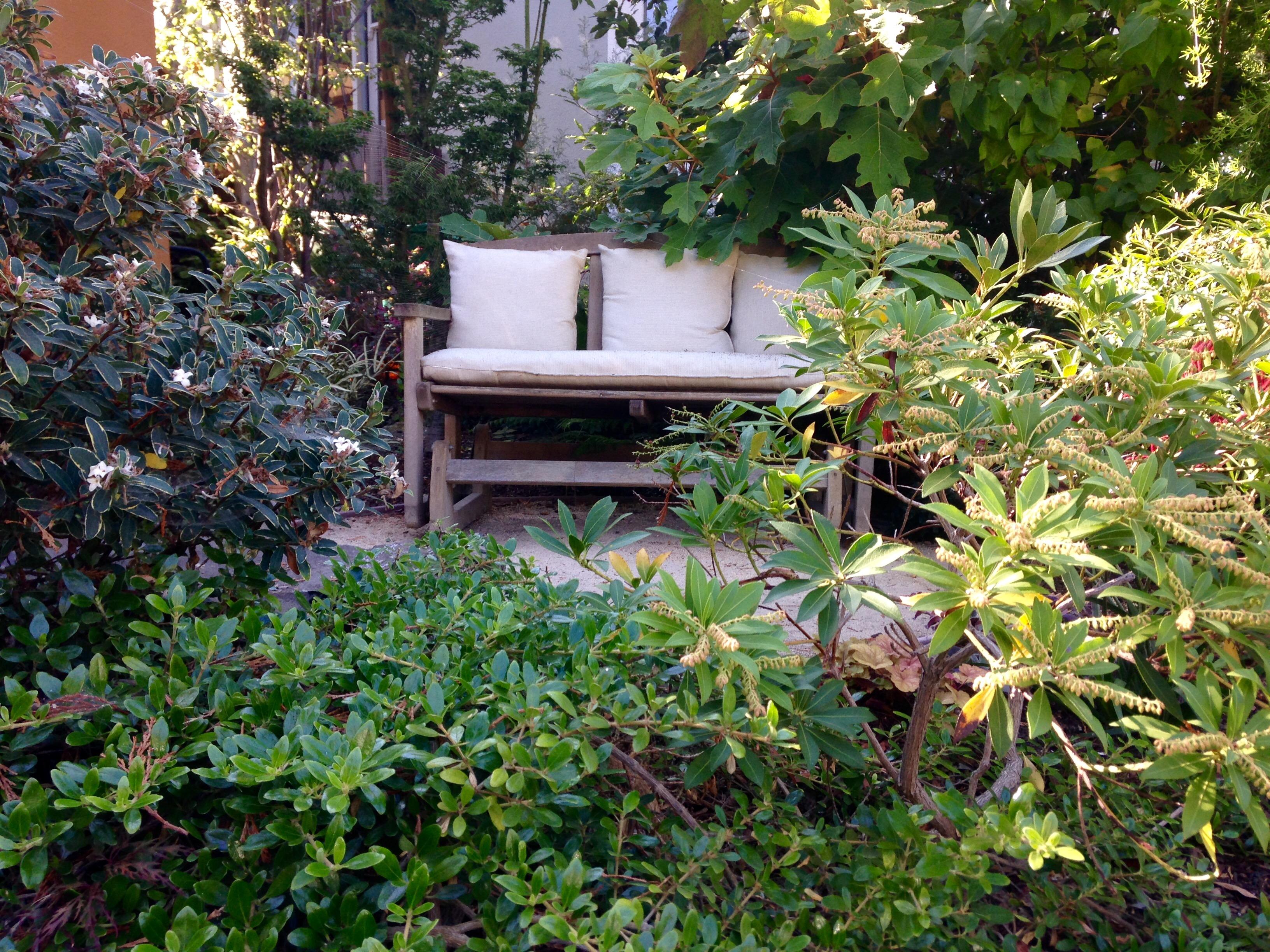 Garden maintenance San Francisco, CA